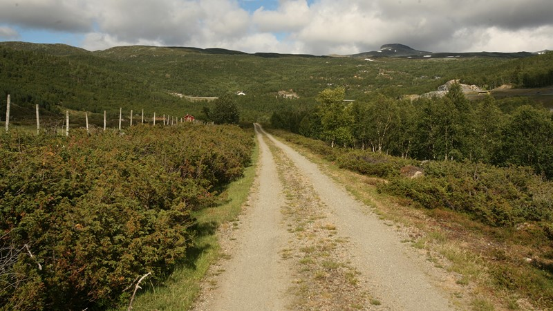 This gravel road takes you trough the mountain-farm area of Honingane.